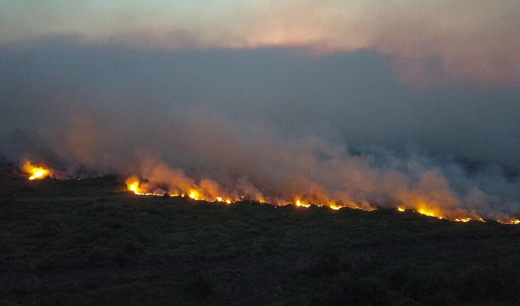 Massive wildfires hit southern Brazil's Pantanal - Phys