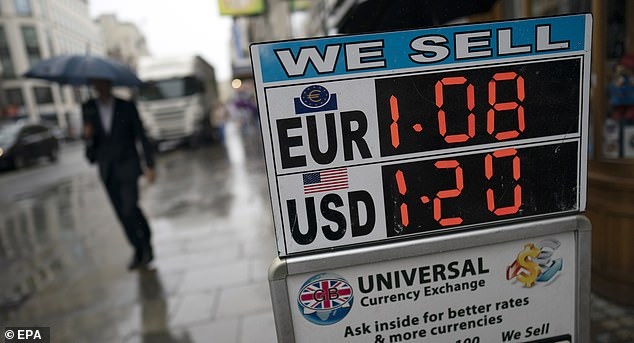 Brummer says were the UK part of eurozone the pound would not be there to take the strain