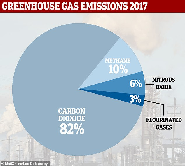 Methane is a major contributor to greenhouse gas emissions, according to data from the US Environmental Protection Agency (pictured). It is out produced only by carbon dioxide but has a far greater impact on global warming
