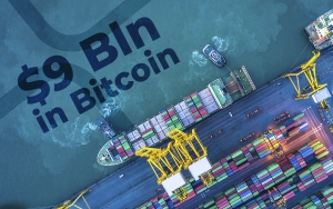 Almost $9 Bln in Bitcoin Transferred, Reports Whale Alert, XRP Can't Do That, Bitcoiner Says
