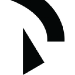 Raiden Network Token logo