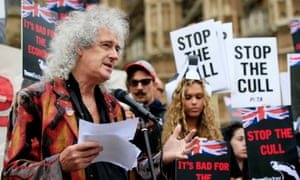 The Queen guitarist Brian May leads a protest march in 2015 against the killing of badgers