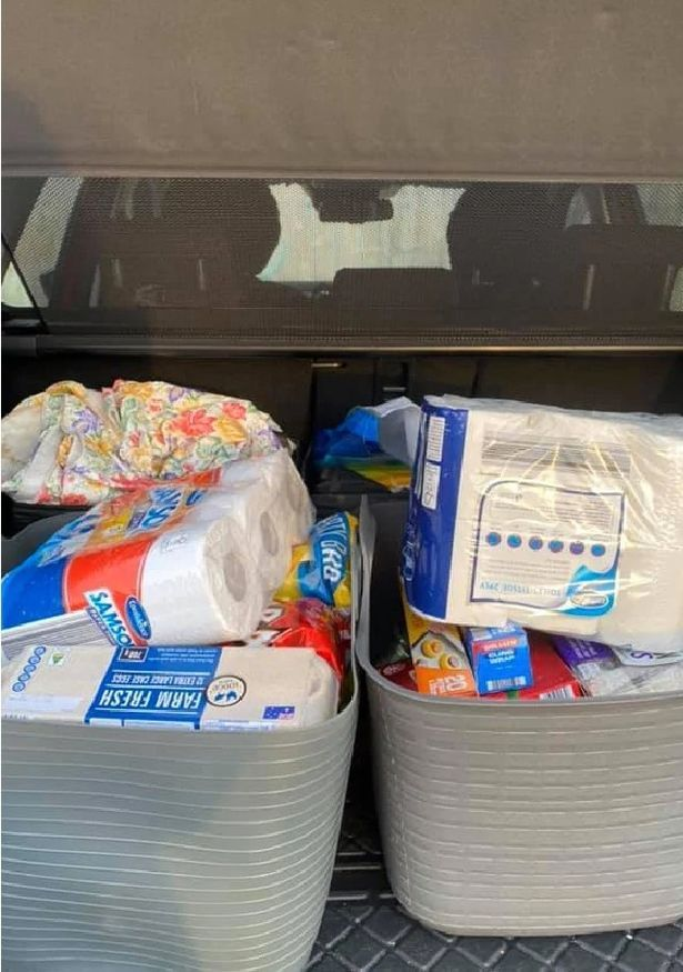 """The tubs fit """"perfectly into the trolley"""" and are easy to get in and out of the car"""