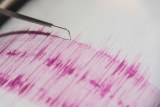 Close up of a seismograph showing pink ink on white paper.