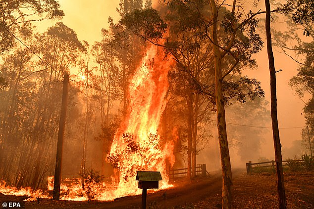 Insurers are bracing themselves for a deluge of claims connected to the Australian wildfires
