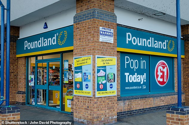 Steinhoff International is looking to sell its European retail division, called Pepco, which includes Poundland