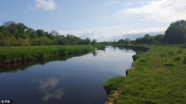 Amid all the gloom about the state of Britain's wildlife, there's a glimmer of good news to be found in our rivers, ponds and lakes. The population of water-loving insects, in decline since the 1970s, has staged a remarkable recovery.The River Otter in Devon is pictured above