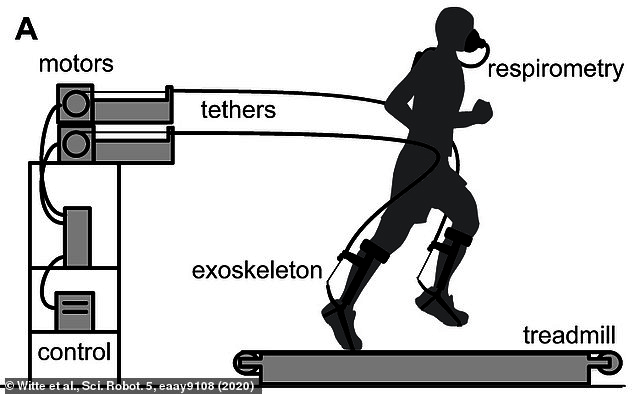 The engineers behind the project say the equipment currently only works on a treadmill and when the device is hooked up to a machine via cables. However, they are working to make the exoskeleton portable and lightweight
